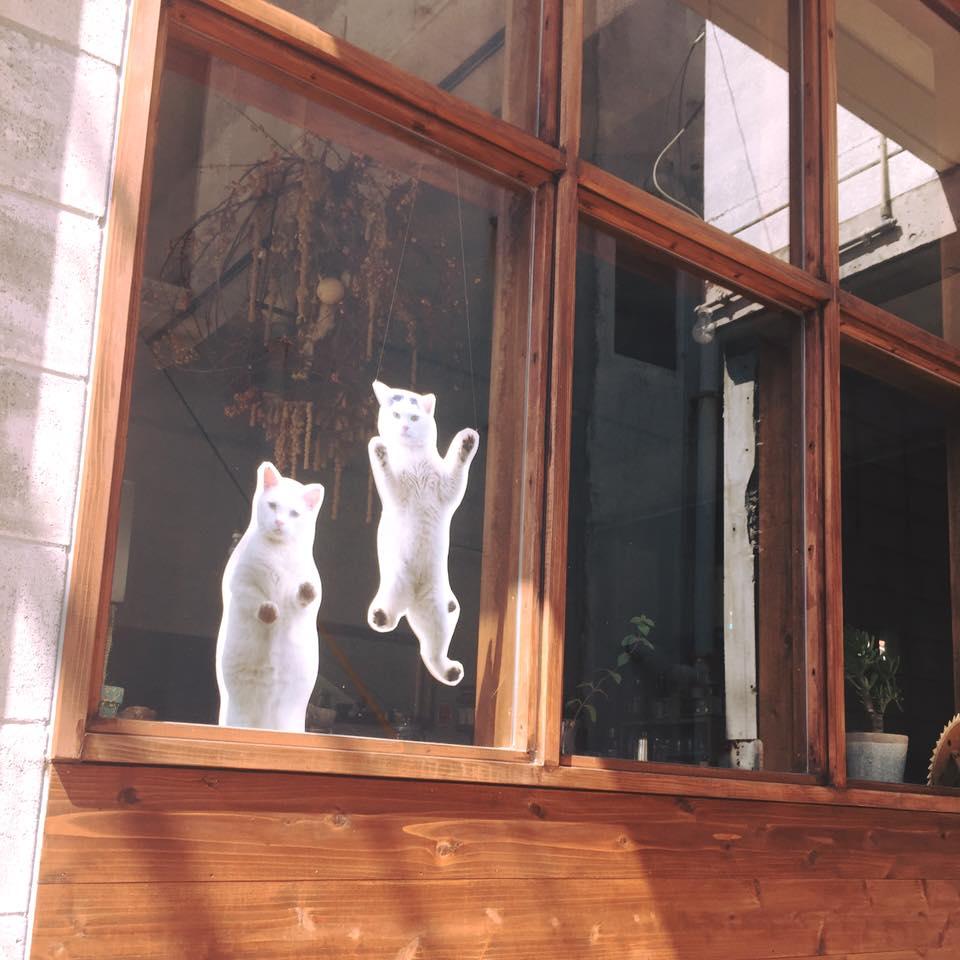 写真展「庭猫」安彦幸枝スライド&トークショー